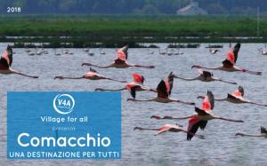 Copertina della Guida Comacchio una destinazione per Tutti rappresenta dei fenicotteri rosa in volo su una valle di Comacchio
